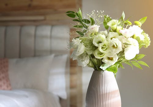 A cheerful bouquet of white flowers radiates beside a bedroom window