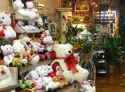 Stuffed animals and potted plants await inside our Greenville showroom